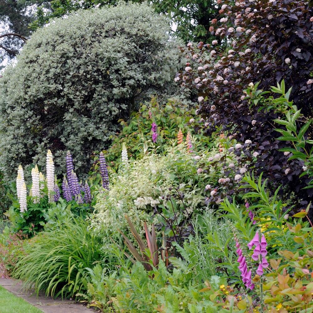 idee di pittura da giardino